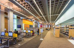 The Secret Statistical Lives of Librarians