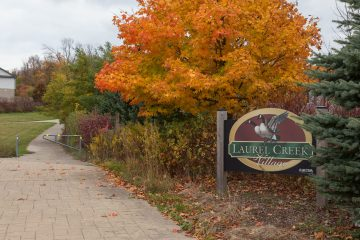 If Streets Could Talk: Laurelwood
